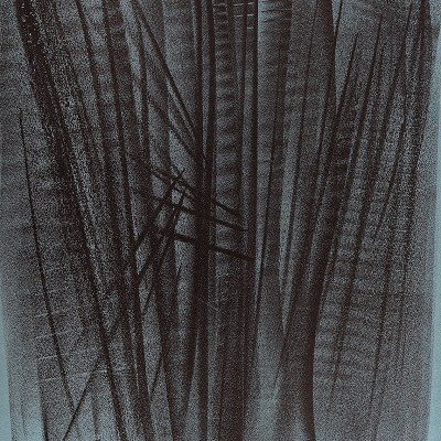 Details of Hans HARTUNG   L 127 1964